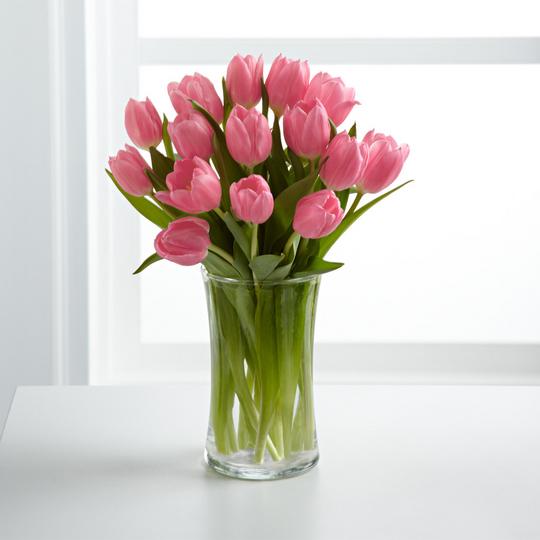 Компания АЗБУКА ОКОН поздравляет с 8 марта!